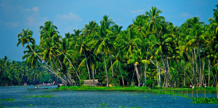 Backwaters near Alappuzha (Alleppey), Kerala, India