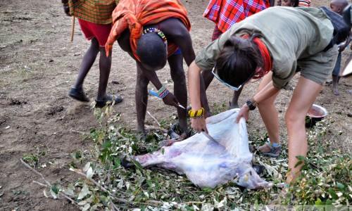 skórowanie-kozy-wioska-masajów-szpilki-w-plecaku-ewa-chojnowska