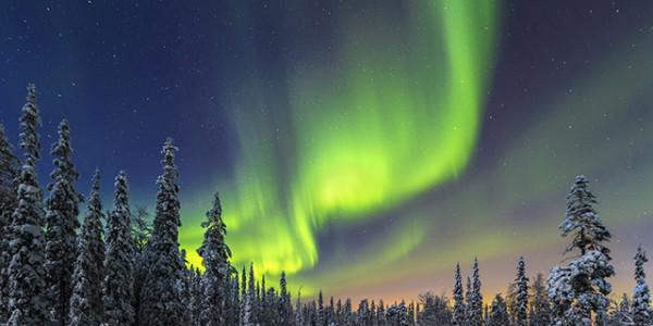 Northern lights over the Pyhae Luosto National Park in northern Finnland.