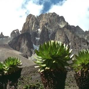 Climb-MMout Kenyat-Kenya-new-1260-1